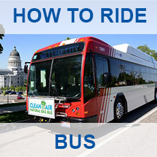 How To Ride a Bus - click for more information